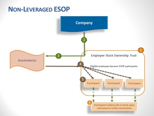 Non-leveraged ESOP Illustration